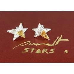 """Estrella """"Rigel"""" pendientes..."""