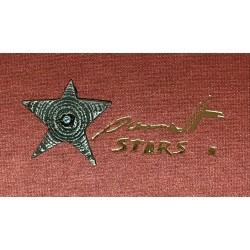"""Estrella """"PROCYON"""" colgante..."""